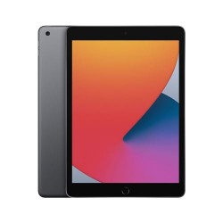 Acheter un iPad 10.2 (2020) WiFi 32 Go Gris Sidéral - neuf - paiement plusieurs fois