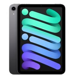iPad Mini 6 WiFi 64 Go Gris...